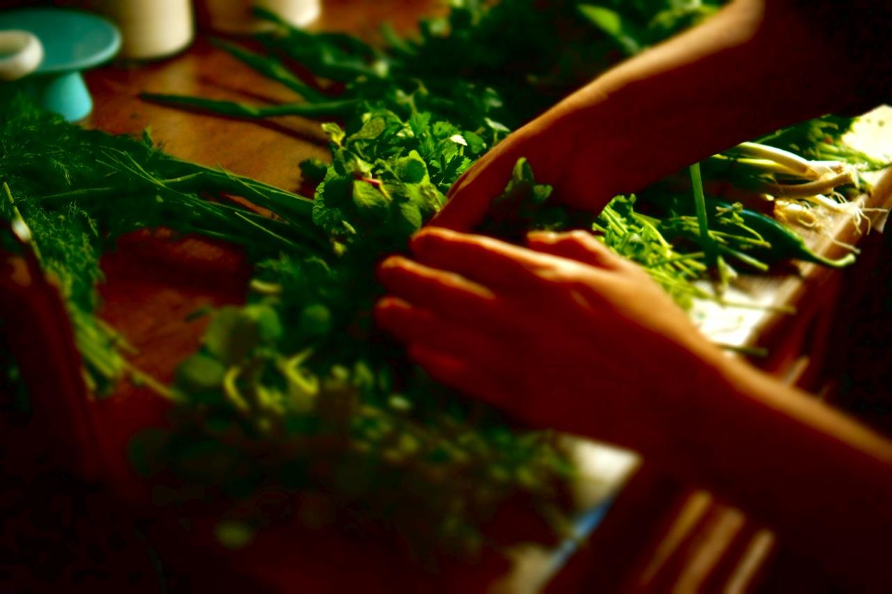 סלט עשבים ירוקים ברוטב הדרים, גבישס -בלוג האוכל של מירב גביש